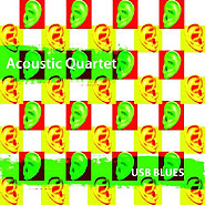 Acoustic Quartet. USB-blues.